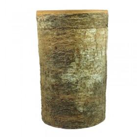 Cinnamon Bark Box